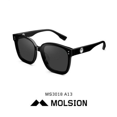 MS3018-A13