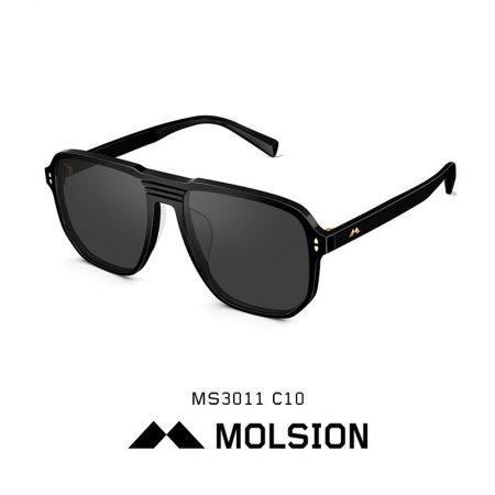 MS3018-C10